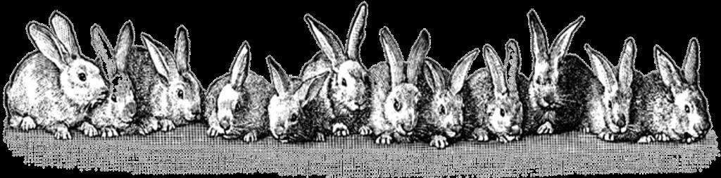 free+vintage+digital+stamp_many+easter+bunnies